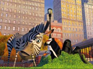 scene-from-madagascar
