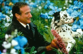 what-dreams-may-come-robin-williams-26619603-1499-981