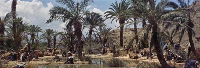 lawrence-darabie-oasis