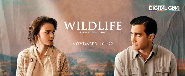 wildlife-web-banner